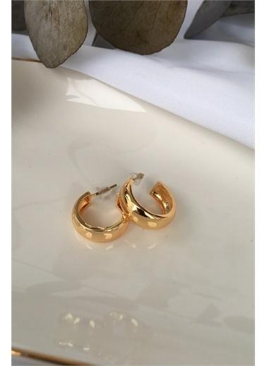 My Joyas Design Küçük Kalın Bombeli Halka Küpe Altın